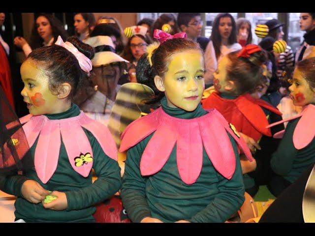 """VÍDEO: 'Carnaval, carnaval..."""", Si participaste en el Gran Pasacalles de Carnaval seguro que estás en nuestro vídeo"""
