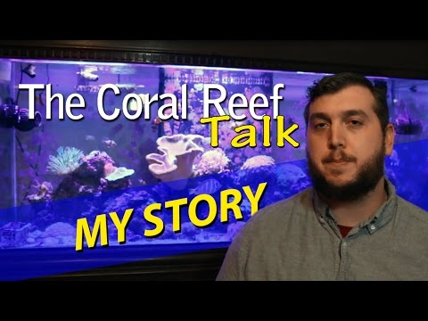 YouTube, Reef Tanks and TheCoralReefTalk Story!