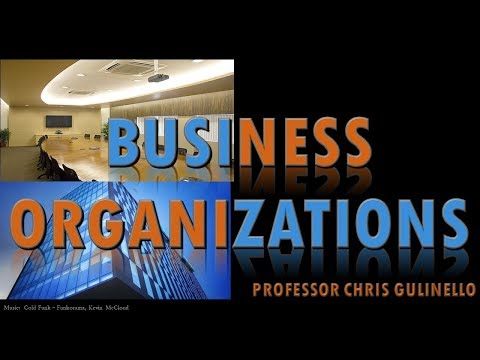 Business Organizations (6A-100):  Fiduciary Duties, Corporation - Introduction