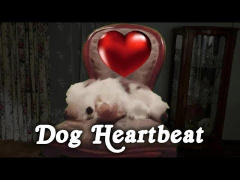 ▶️ Dog Heartbeat. Puppy Sleep Training. Dog Heartbeat Sound Effect. Heartbeat Sound. 12 Hours. 📢