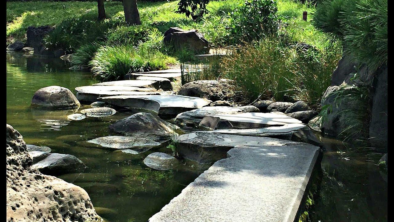 Jardin zen tokyo le momijigari cette fois ci au jardin for Jardines japoneses zen