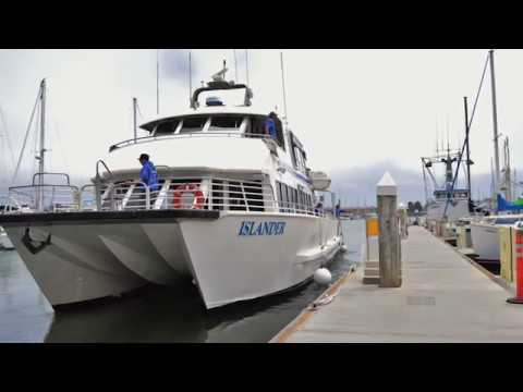 Island Packers Cruisers - Spirit of Small Business Event 2018