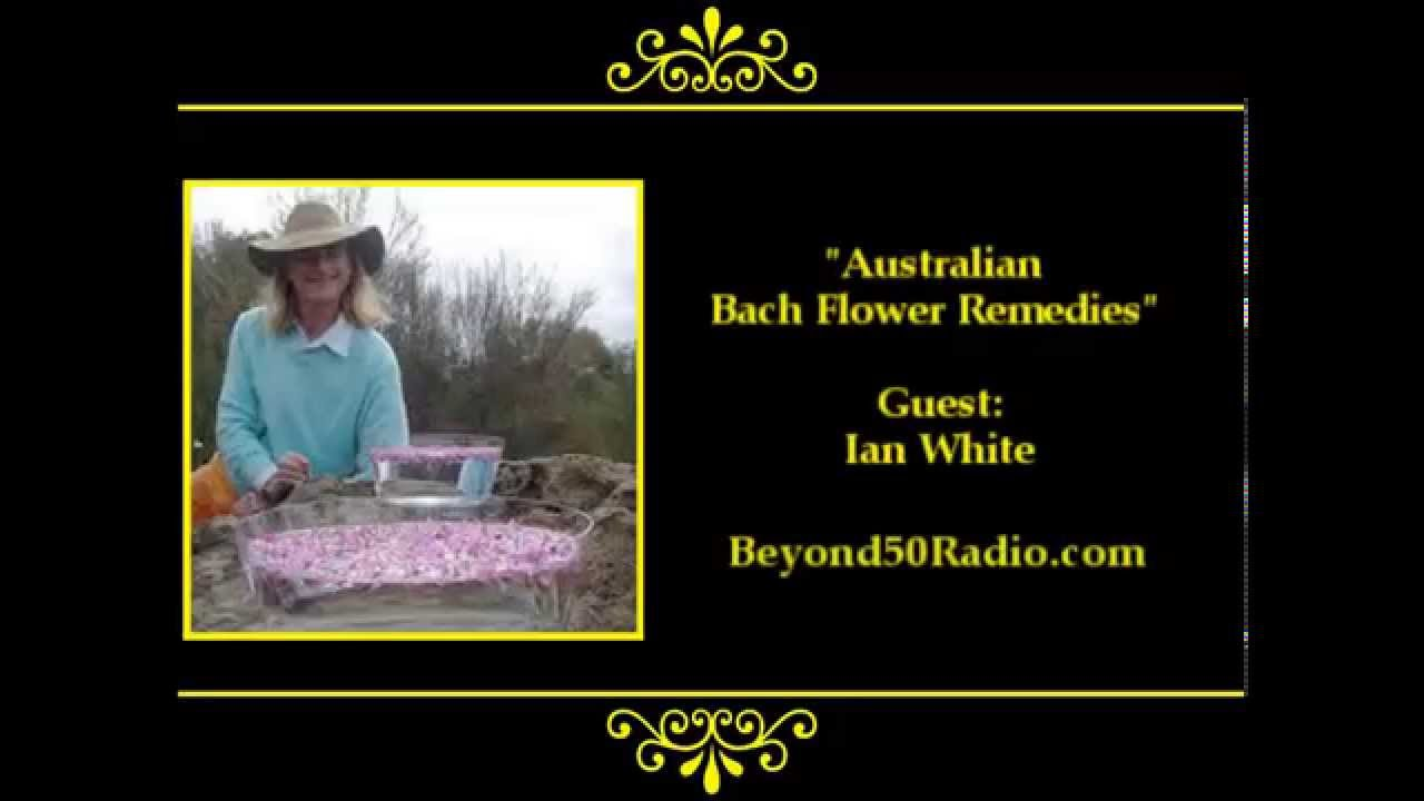 Australian Bush Flower Essences Youtube