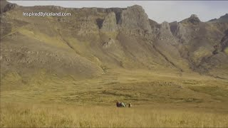 The 100th Anniversary of Iceland