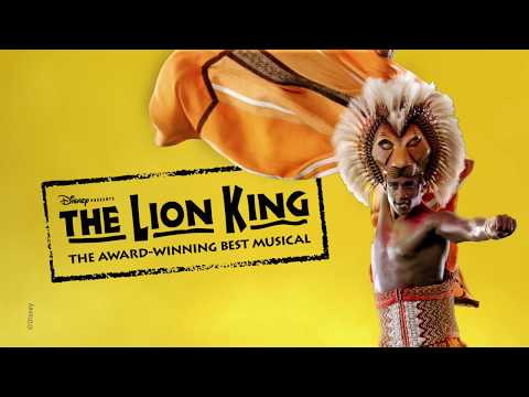 See THE LION KING on Broadway!