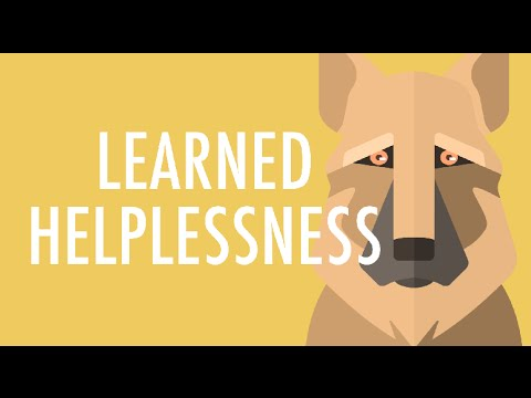 What Is Learned Helplessness Youtube