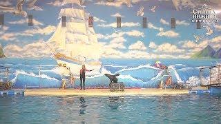 Благотворительный показ шоу морских животных прошел в нижегородском дельфинарии