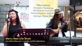 Merry Bees Live Music - Thinking Out Loud (Ed Sheeran cover)