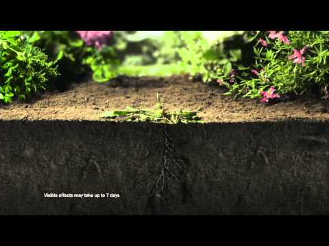 NEW Roundup TV AD | Videos | Roundup Weedkiller