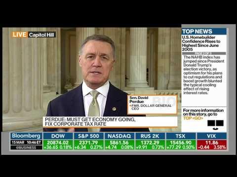 Senator David Perdue On Bloomberg