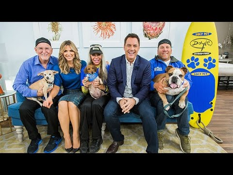Pets - Rose Parade Surfing Dog Contest - Home & Family