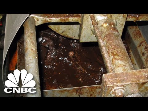 Filthy Conditions At The Peanut Plant | American Greed | CNBC Prime