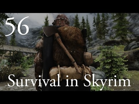 "Survival in Skyrim (Hardcore Modded Skyrim): Ep 56 - ""Bees Like Fire, Right?!?!"""