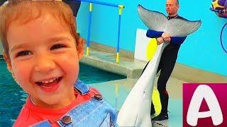 ДЕНЬ РОЖДЕНИЯ АЛИСЫ 4 года Едем в ДЕЛЬФИНАРИЙ КМВ Белые киты Дельфины Морской котик Для детей #Алиса