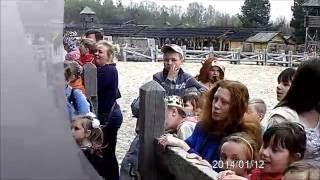 Театральная студия для детей и собак ПЕСИКИ КУДЕСИКИ