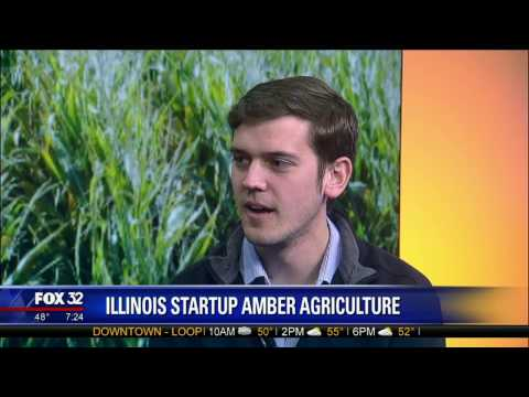 Illinois Startup Amber Agriculture