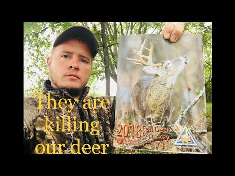 They Are Killing Our Deer For Money | Missouri Department Of Conservation