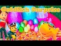 Opening Gold Fish Surprise Eggs  in the Backyard with Paw Patrol and Blaze Toys