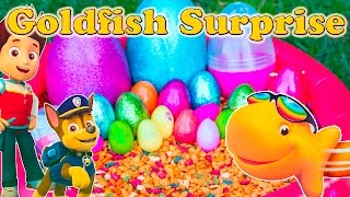 Repeat youtube video GOLDFISH Surprise Eggs Worlds Largest Goldfish Paw Patrol + Blaze + Peppa Surprise Eggs Toys Video