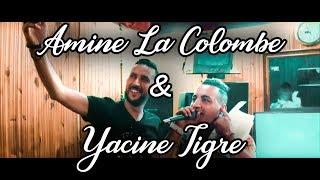 Yacine Tigre Avec Amine La Colombe 2018 - Wili Wili Manich Nedrob Bech Nezha