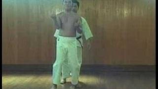 Sanchin kata training