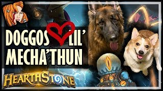 DOGGOS LOVE LIL' MECHA'THUN 💗 The Most Broken Rise of Shadows Deck