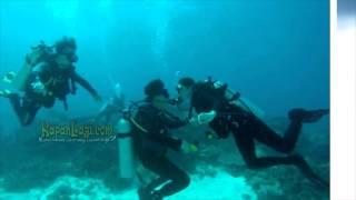 Download Video So Sweet Luna Maya dan Reino Barack Kencan di Dalam Air MP3 3GP MP4