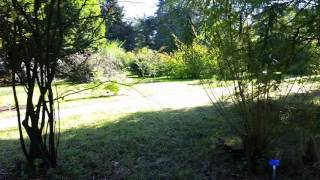 Delftse hout vakantiepark delft