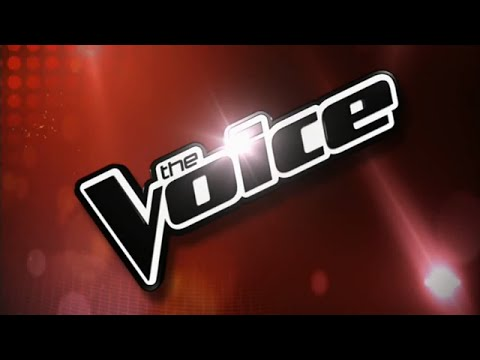 The Top 20 Most Successful Artists from The Voice