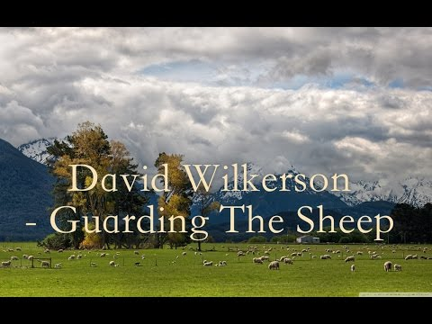 David Wilkerson - Guarding The Sheep | Full Sermon
