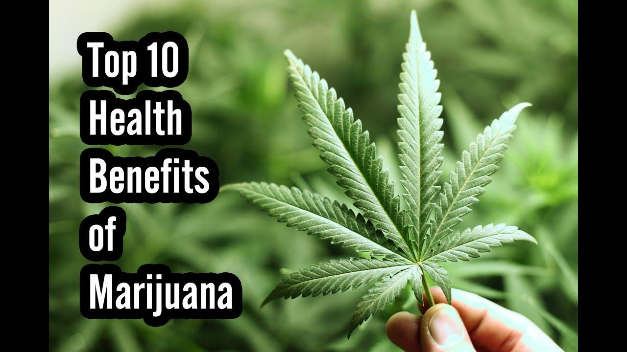 Image result for Top 10 Health Benefits Of Marijuana