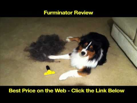 FURminator Review - Deshedding Tool - Best Dog Grooming Brush ★★★