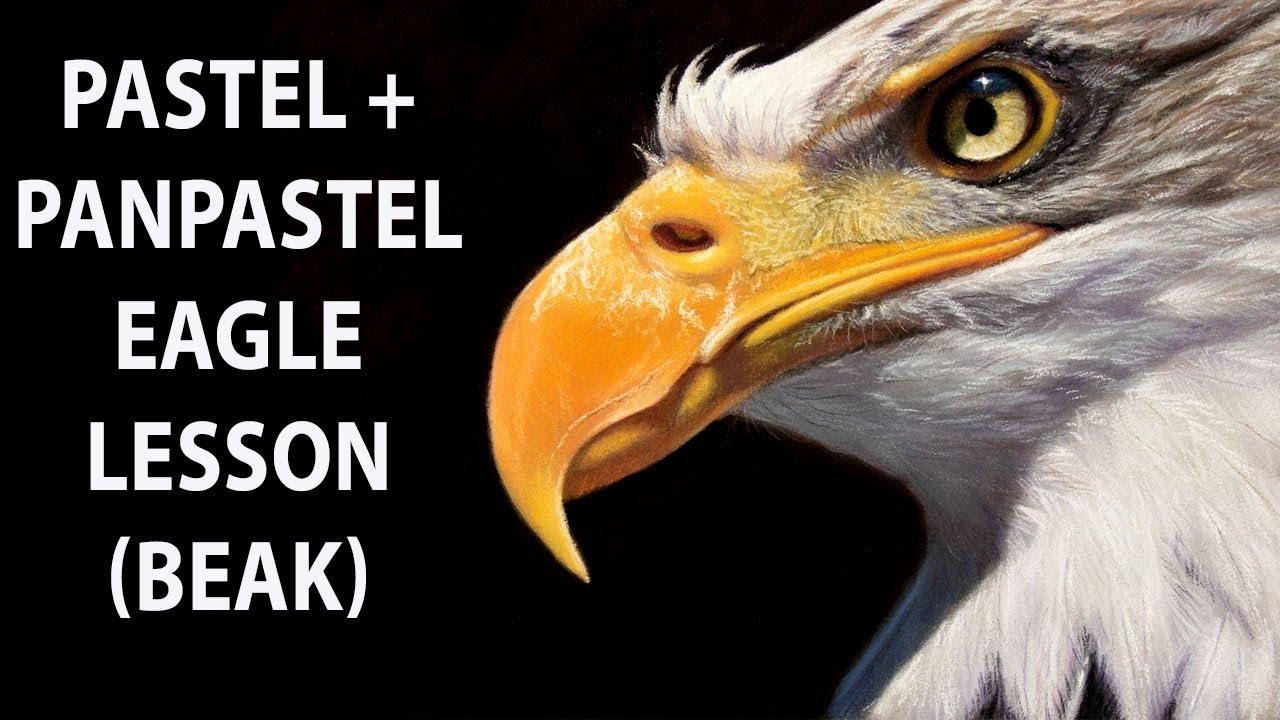 PanPastel Pastel Painting Lesson - Eagle