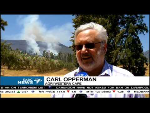 Fires continue to wreak havoc in parts of the Western Cape