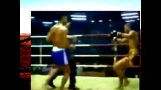 Тайский бокс  Лучшие нокауты