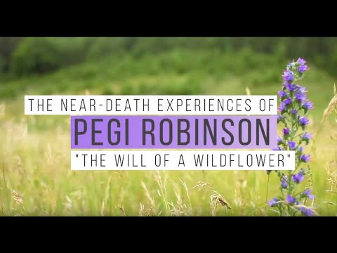 Pegi Robinson's NDE's Part I