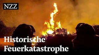 Waldbrände an der US-Westküste erreichen historisches Ausmass | NZZ