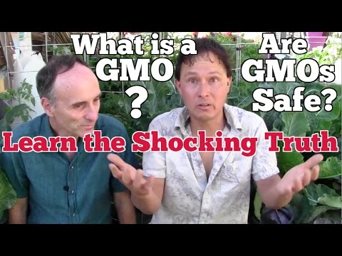 What's a GMO? Are GMOs Safe? Learn the Shocking Truth