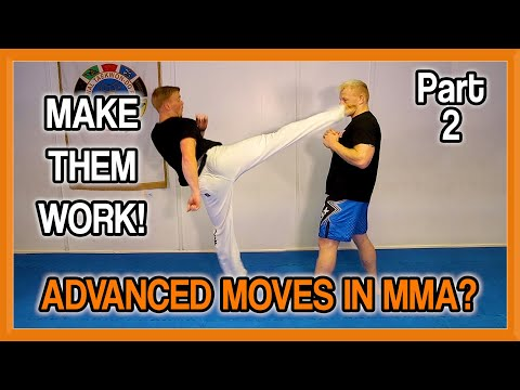 Advanced Kicks in MMA? How to Make Them Work! | Fight Perfect TV  | Part 2