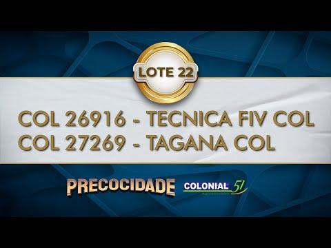 LOTE 22   COL 26916, 27269