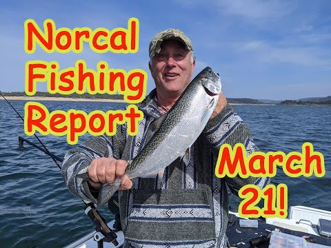 Norcal Fishing Report March 21