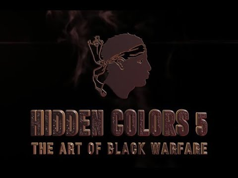 Tariq Nasheed And Brother Polight : Hidden Colors 5 . The Art Of Black Warfare Full Interview