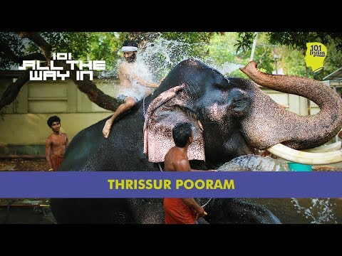 Thrissur Pooram: The Mother Of All Festivals | 101 All The Way In | Unique Stories From India