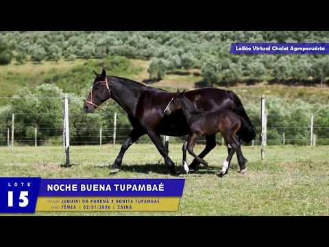 LOTE 15 - Noche Buena Tupambaé
