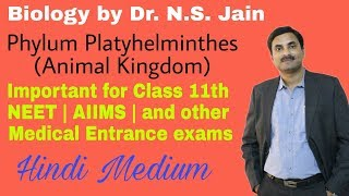 Phylum Platyhelminthes (Non-Chordata) Animal Classification Class 11th Hindi