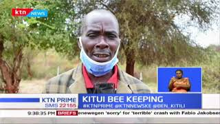 Kitui County rolls out training program for bee farmers