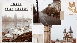 A Day In Prague // October in Europe