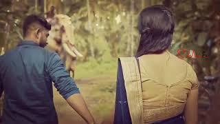 Tamil whatsapp status   kovilin ulle nulindhudum bozudhu   roma album song