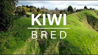 Kiwi Bred Episode 4, 2019