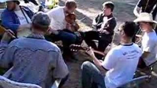 Foghorn Stringband at Grass Valley Bluegrass Festival